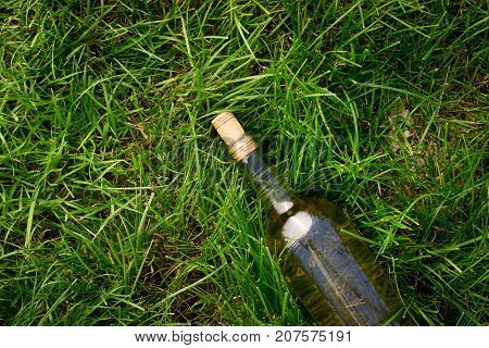 Bottle of white wine on a green grass.