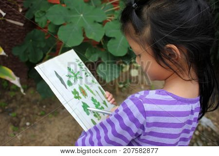 Asian children learning biology plant species outside the classroom.
