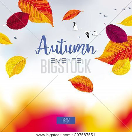 Autumn sky and leaves under the forest - vector banner with foliage and birds for sales and other autumn events for prints greeting cards posters invitations