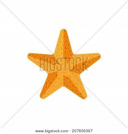 Flat style textured starfish, star fish icon, symbol, decoration element, vector illustration isolated on white background. Flat cartoon vector illustration of starfish, nautical decoration element