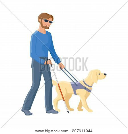 Blind Caucasian man in dark glasses walking with cane and guide dog companion, flat cartoon vector illustration isolated on white background. Flat cartoon blind man walking with a guide dog poster