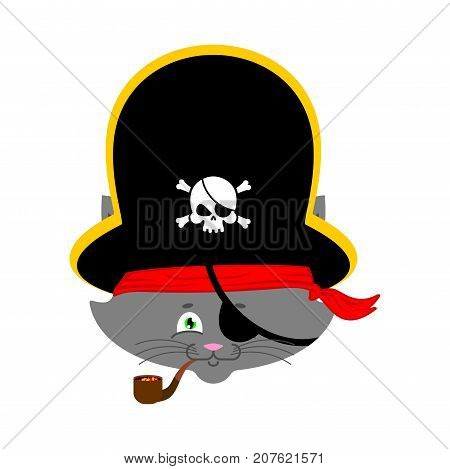 Cat pirate. Home pet buccaneer. filibuster hat and smoking pipe. Vector illustration. poster
