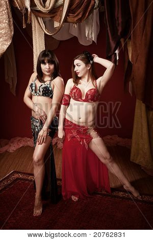 Gorgeous Belly Dancers