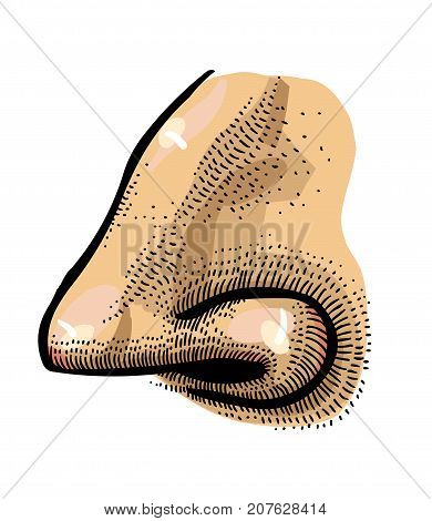 Human nose freehand picture. Artistic drawing. Authentic cartoon.