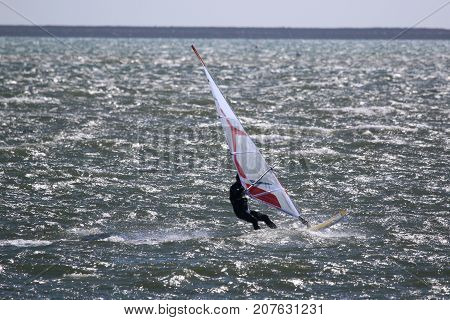 windsurfer riding his board in Portland harbour