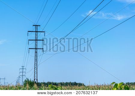 A number of high voltage poles leaving into the distance with high voltage wires. In the foreground a field of corn. In the background a blue sky with clouds. Electricity high voltage.