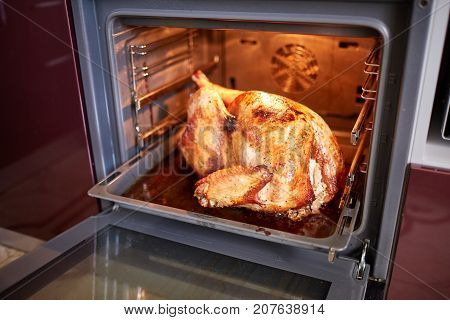 Close-up of a freshly roasted Thanksgiving turkey on a plate on a heated oven background. Crispy, stuffed Christmas turkey out of the oven.