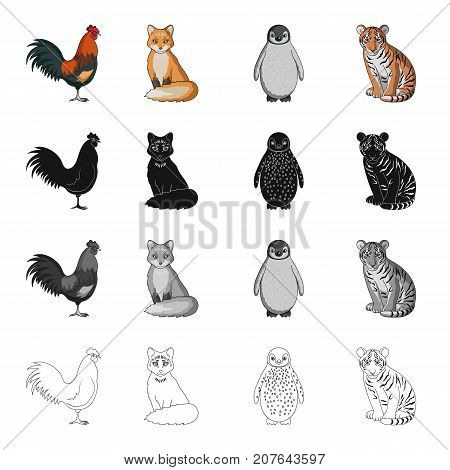 Rooster, fox, tail, and other  icon in cartoon style.Animals, bird, domestic icons in set collection