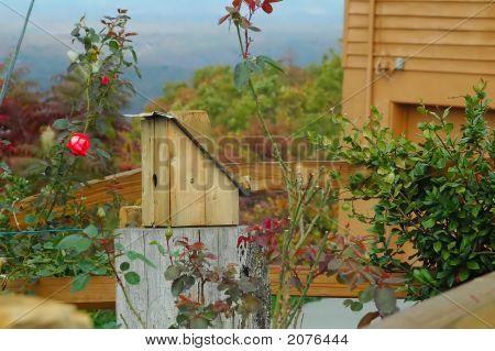 Birdhouse On The Hill
