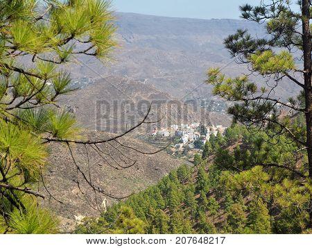 View over San Bartolome through pine trees, Gran Canaria