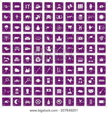 100 cow icons set in grunge style purple color isolated on white background vector illustration