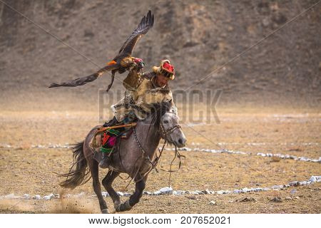 OLGIY, MONGOLIA - SEP 30, 2017: Kazakh Eagle Hunter traditional clothing, with a golden eagle on his arm during annual national competition with birds of prey