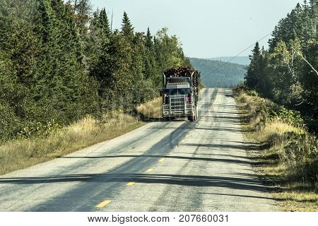 Ontario Canada 09.09.2017 Big Logging truck moving on highway wood from harvest field plant Canada ontario quebec