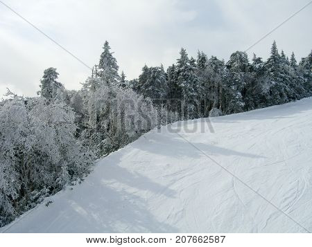 Winter Ski Mountain