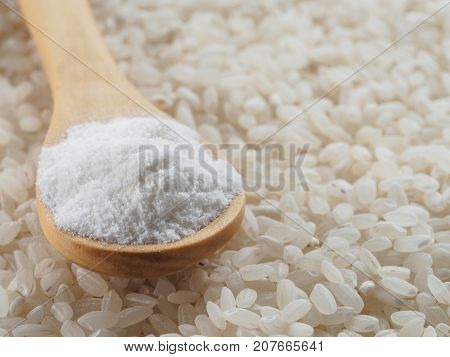 rice flour in wooden spoon and rice grains. whole-grain rice flour on rice grains background. Copy space.