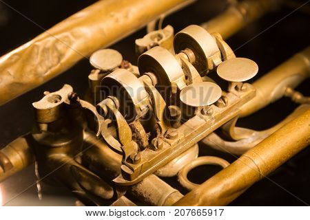 Part Of A Very Old Trumpet