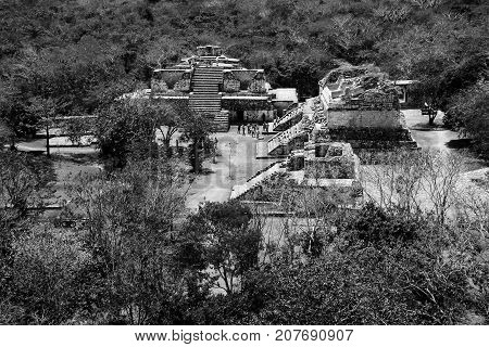 Coba, Mexico. Aerial view of ancient mayan city in Mexico. Coba is an archaeological area and a famous landmark of Yucatan Peninsula. Forest around the pyramids in Mexico. Black and white