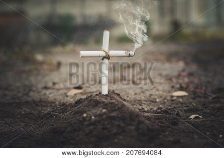A Cigarette Tomb