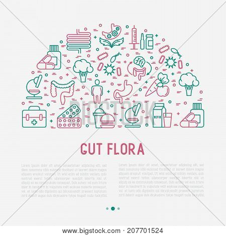 Gut flora concept in half circle with thin line icons: gut, bacteria, obesity, stomach, infection, depression, medicine. Vector illustration for background of medical survey or report.