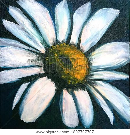 Acrylic Painting on canvas of white daisy on dark background