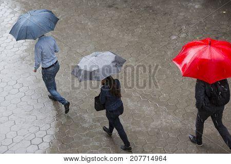 Rainy Weather Umbrella