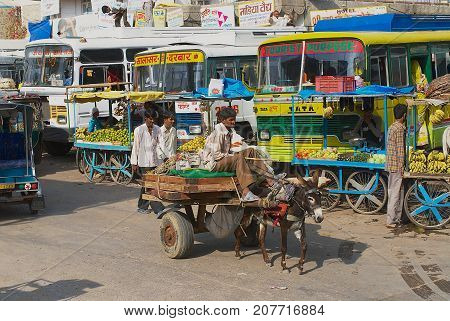 MANDAWA, INDIA - MARCH 31, 2007: Unidentified people transport goods to the local market by donkey in Mandawa, India.