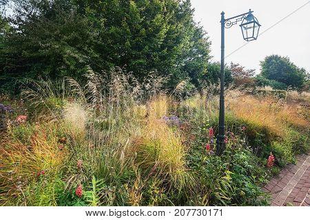 Romantic prairie garden in the in The Netherlands