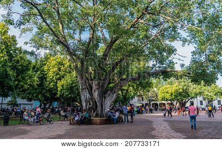 SANTO DOMINGO DOMINICAN REPUBLIC - SEPTEMBER 10 2017: Sunday afternoon people gather in the Colon Park.
