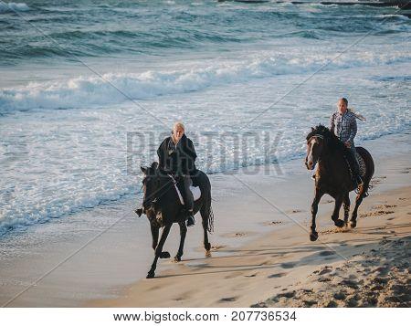 View of women riding beautiful horses wading through the sea splashing water drops around in golden light sunset or sunrise. Stallion walking in ocean water