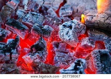 Burning And Glowing Charcoal With Hot Flame In The Background