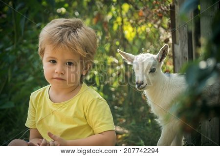 Friendship pet family farm. Cute boy and goat on nature background nature garden and household. Animal in zoo or at home. Sad look of the child and true friend together. Childhood milk in village