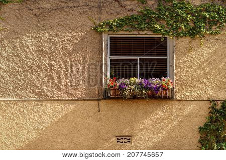 Window of an old building with flowers sunny day