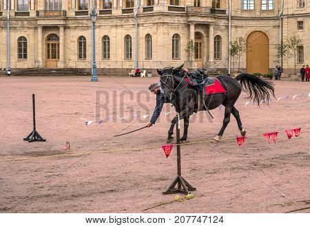 Gatchina St. Petersburg Russia - September 30 2017: Horse show of Cossacks on the parade ground of the Gatchina Palace. Cossack on a race performs a trick - raises the ring with the help of a saber.