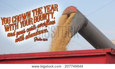 Psalm 65:11 You crown the year with your bounty, and your carts overflow with abundance.