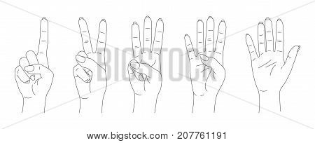 finger count vector, outline hands sketch set