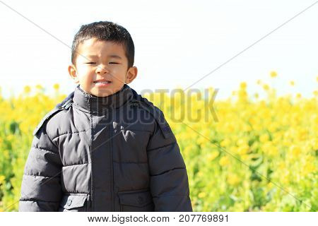 Japanese Boy And Rape Blossoms (3 Years Old)