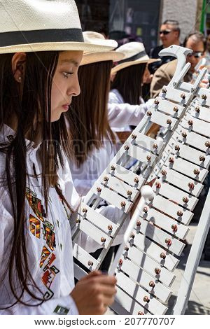 Girl Plays Xylophone In Marching Band