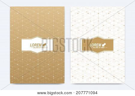 Modern vector template for brochure, Leaflet, flyer, cover, booklet, magazine or annual report. A4 size. Abstract golden presentation book layout. Geometric pattern with connected lines and dots