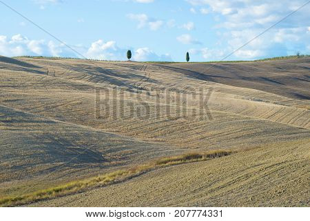 A sunny September day in the fields of Tuscany. Italy