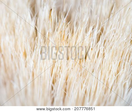 background of wool . Photo of abstract background