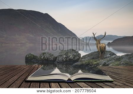 Stunning Powerful Red Deer Stag Looks Out Across Lake Towards Mountain Landscape In Autumn Scene Con