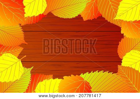 Autumn - mixture (elm, hornbeam, birch, aspen) leaves - vector background , Autumnal leaf, (Betula, Populus, Carpinus, Ulmus)