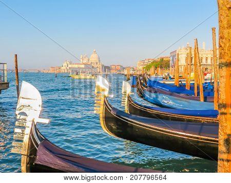 VENICE, ITALY - SEPTEMBER 05, 2013: Gondolas moored on Grand Canal in Venice Italy