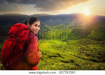 Asian lady backpack and travel the green tea plant in Cameron highlands with sunset and mountain Cameron Highland Malaysia Asia