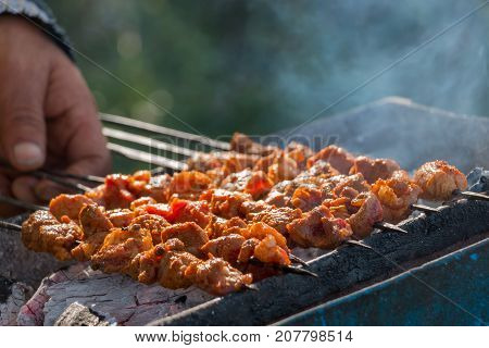 Indian lamb tikka grilled on charcoal flame grill; soft focus.