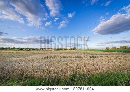 Rural landscape in West Pomerania region in Poland