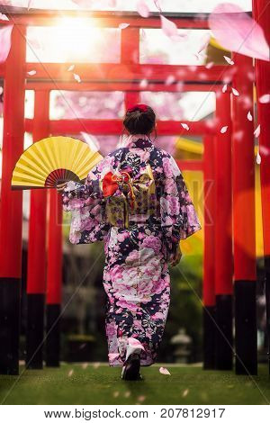 Japan lady in kimono walk in the temple with sun light and Sakura flower background Japan travel kimoni woman lady sakura concept
