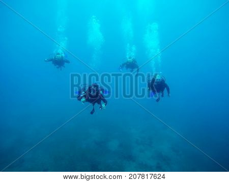 EILAT ISRAEL - MAY 31 2017: Divers swim underwater over a coral reef