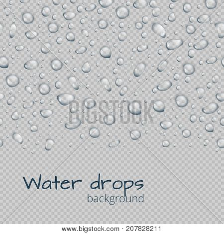 Seamless border of translucent water droplets on a transparent background. Vector backdrop with place for text.