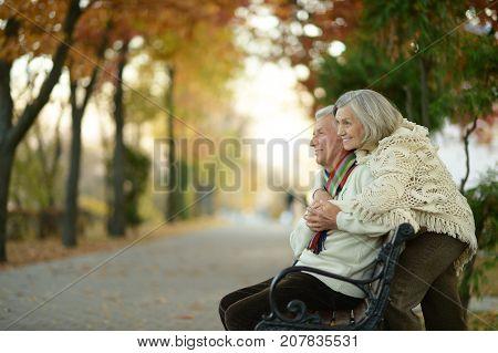 Elderly couple sitting on wooden bench in park